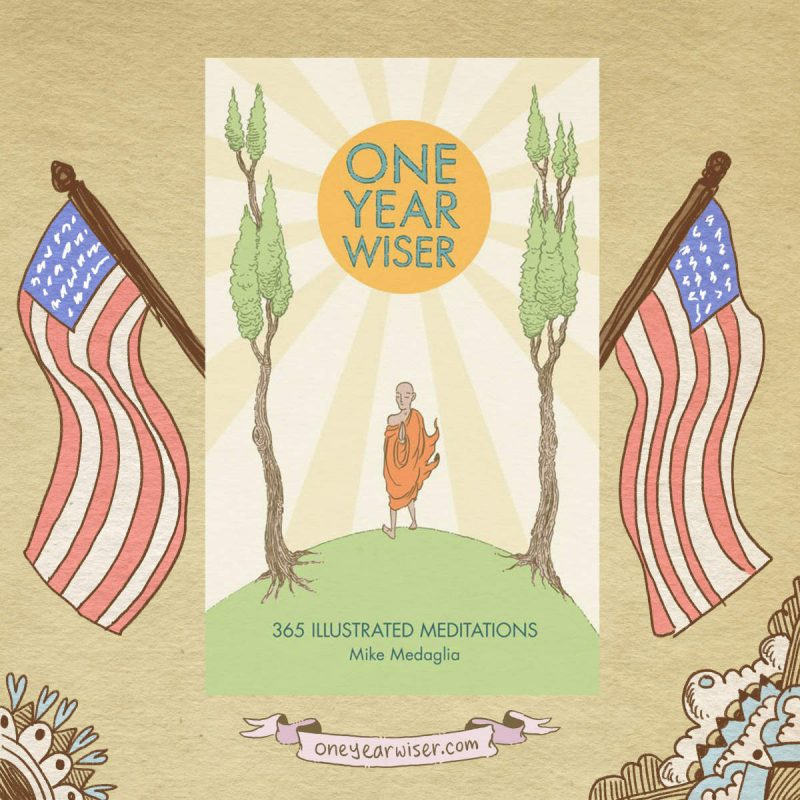 One Year Wiser out in the US!!!